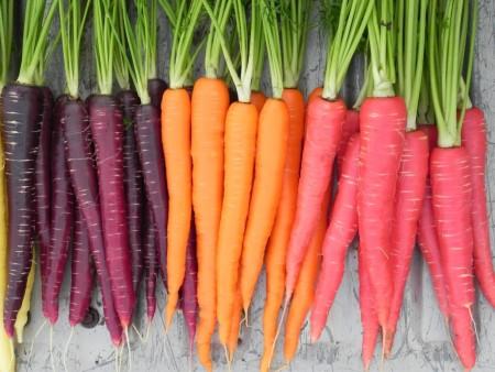 cropped-carrot-nutri-red-sugarsnax-purplesnax.jpg