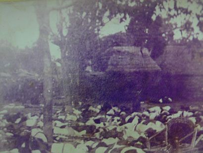 Corpses outside Denpasar palace 1906 (source: wikimedia)