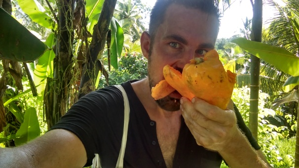 Another Papaya Sweaty Red Face Plant Breakfast