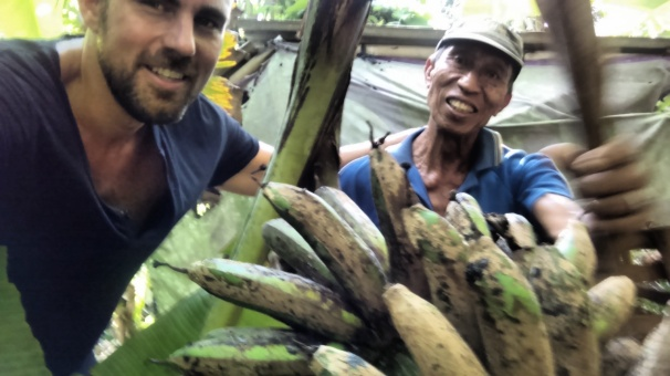 Pak Dewi and I hacking down bananas