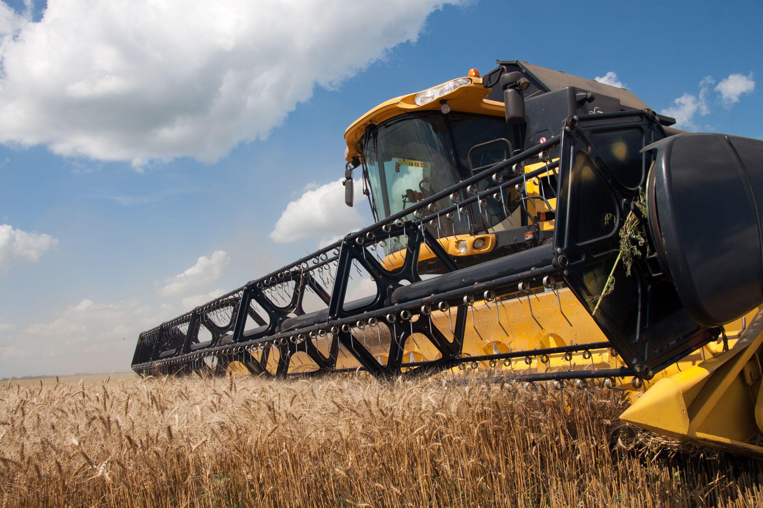 wheatharvest